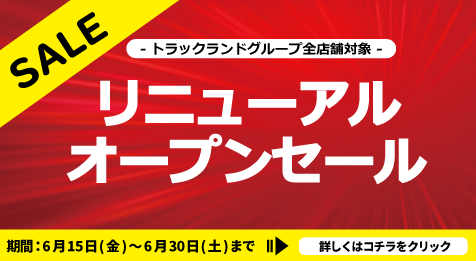 【リニューアルセール】レンタルバナー
